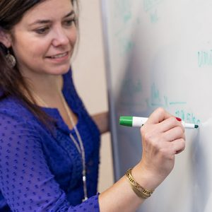 Curricular Innovation and Research Fellowship